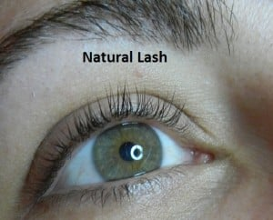 Boom Boom Lashes aka Xtreme Lashes By Beauty Expert Nikol Johnson
