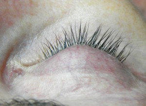 Oh how I love Xtreme Lashes