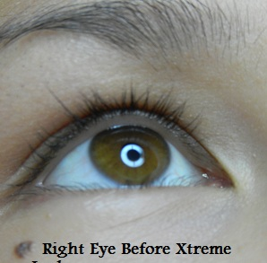 Xtreme Lash Application